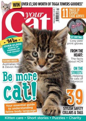 Your_Cat_February_2016_0000.jpg