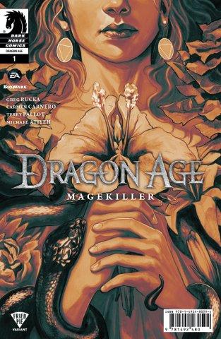 Dragon Age: Magekiller 001 (Fried Pie variant) (December 2015)