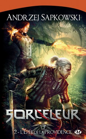 The Witcher: Sword Of Destiny (French 2011 edition)
