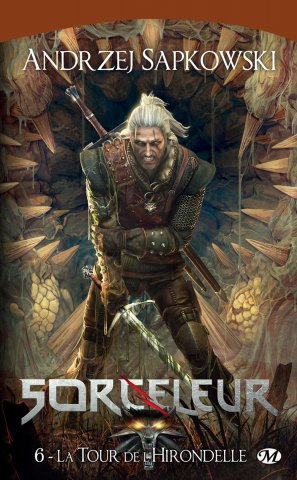The Witcher: The Tower Of The Swallow (French 2012 edition)