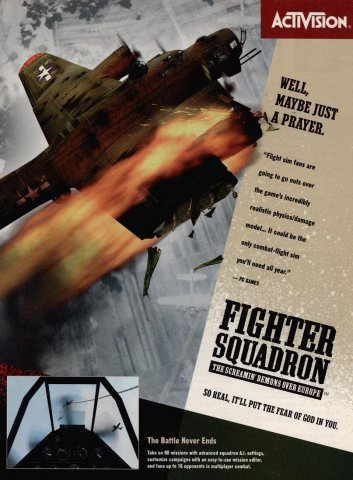 Fighter Squadron - The Screamin' Demons Over Europe 02