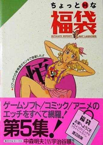 Chotto Ettchi-na Fukubukuro 5 (July 1992)