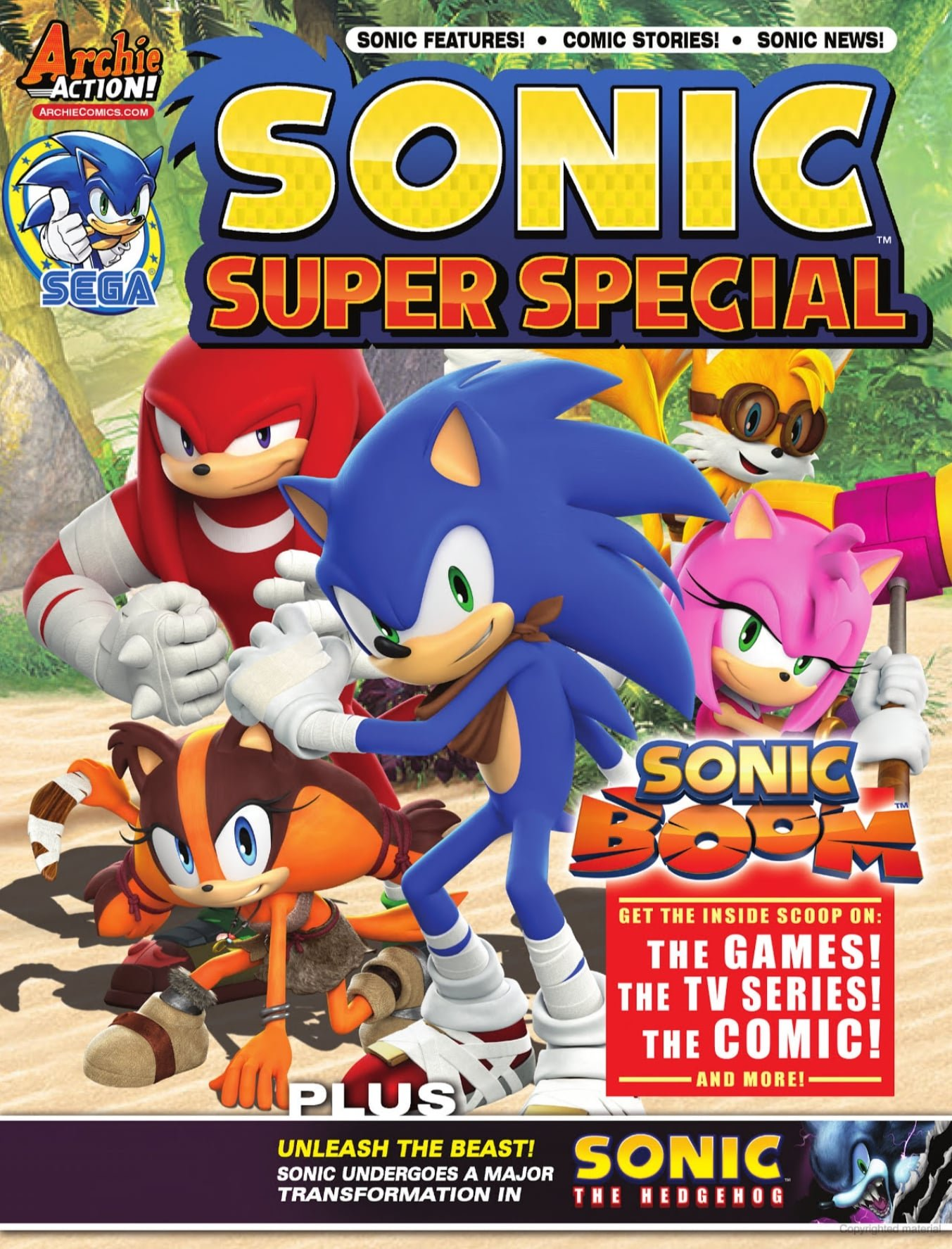 Sonic Super Special Magazine 13 (February 2015)