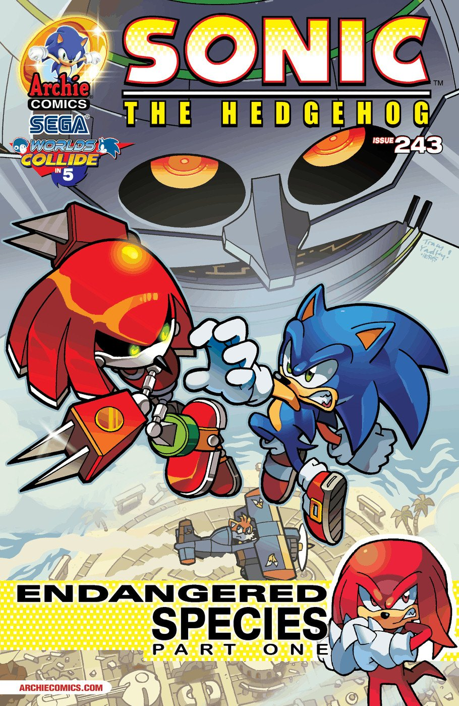 Sonic the Hedgehog 243 (January 2013)