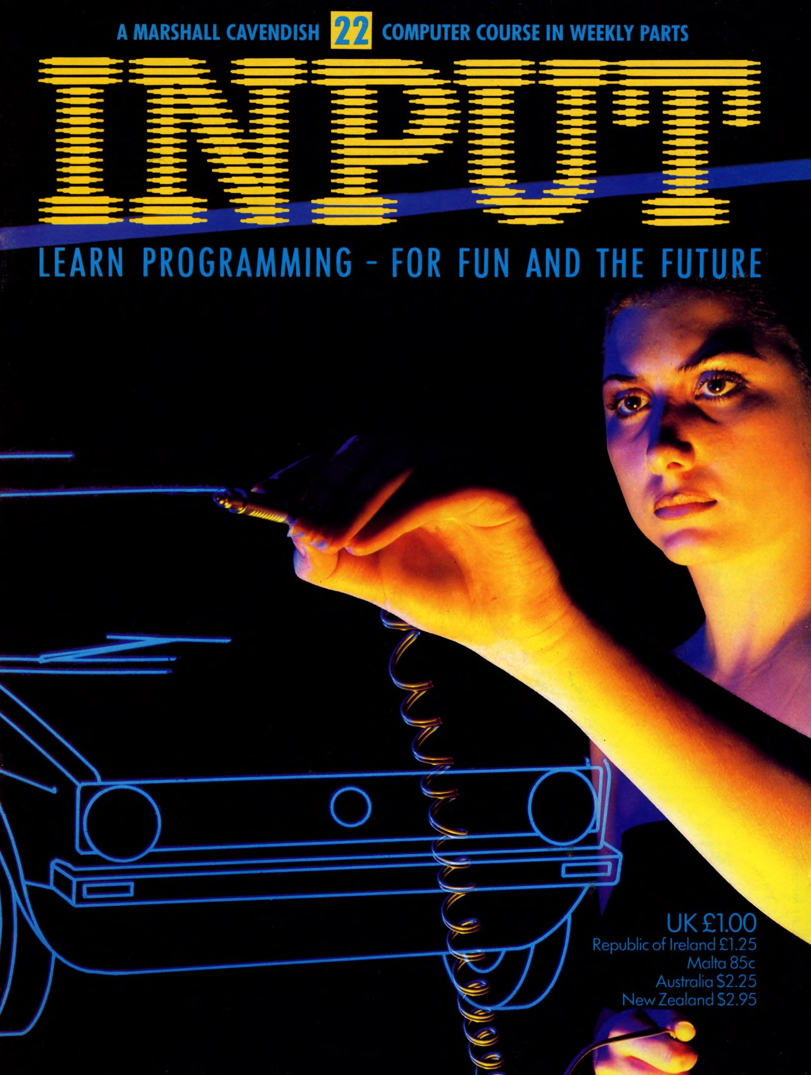 Input Issue 22 (1984)