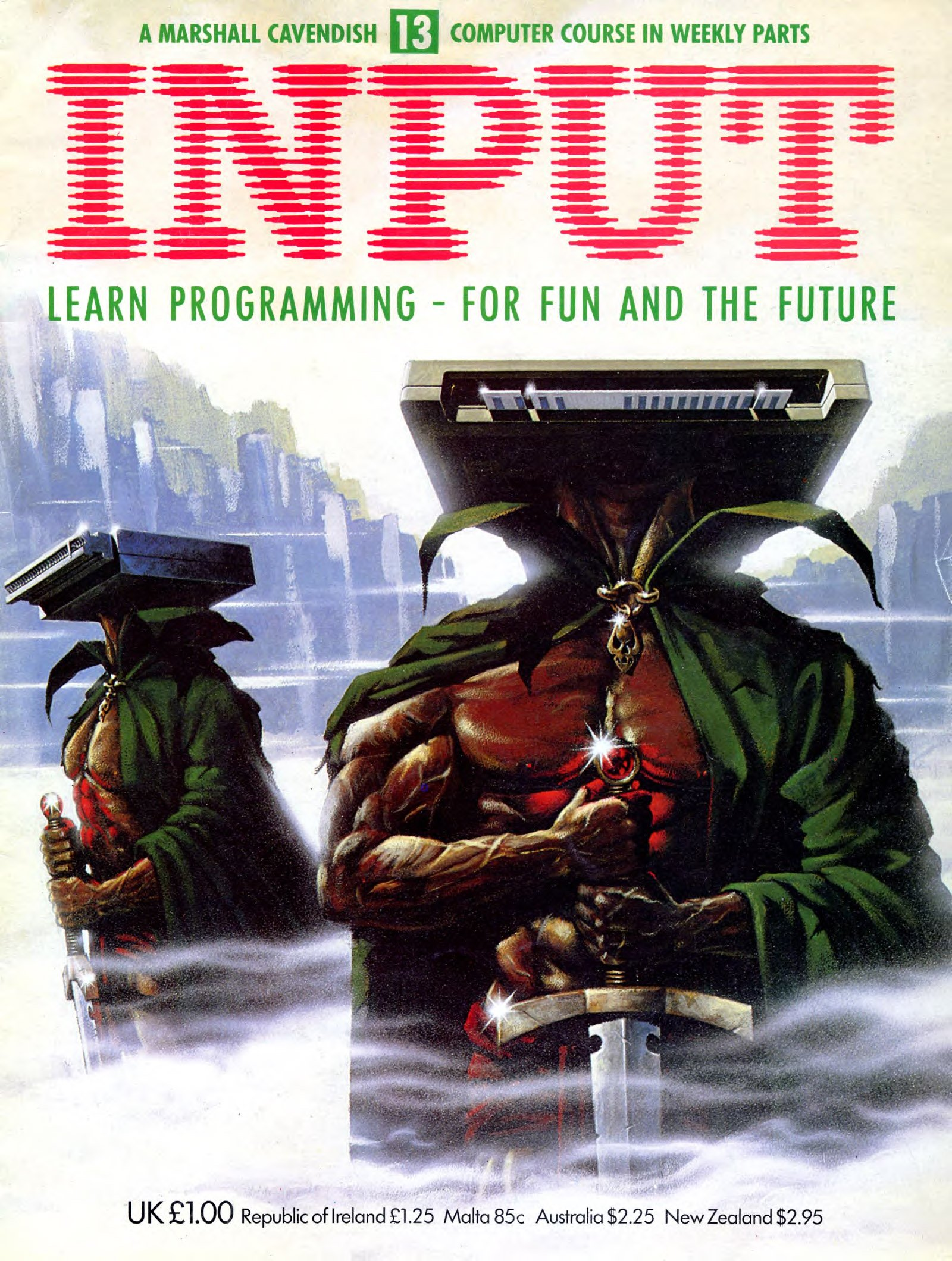 Input Issue 13 (1984)