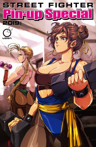 Street Fighter 2019 Pinup Special (June 2019) (cover A)